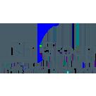 RFI Group Logo